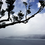 Lake Waikaremoana in Te Urewera National Park..The remote, rugged, immense, Te Urewera National Park is famous for its lakes and forested beauty as well as its stormy history. In the southern part of the park lie two of the park's treasures, Lake Waikaremoana and the smaller Lake Waikareiti. .Te Urewera National Park lies between the Bay of Plenty and Hawke's Bay in the North Island of New Zealand.The nearest towns are Whakatane, Murupara and Wairoa. Te Urewera National Park, New Zealand. 18th January 2010. Photo Tim Clayton.