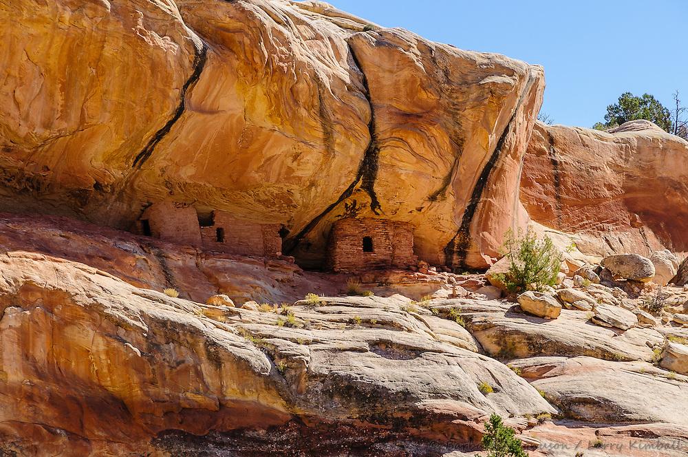 Lower Mule Canyon ruins; Cedar Mesa, UT