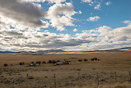 Big Hole Valley, Land of 10,000 Haystacks, old cabin and barn, Southwest Montana
