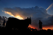 Dog walkers witness a monsoon downpour at sunset in the Sonoran Desert, Tucson, Arizona, USA.
