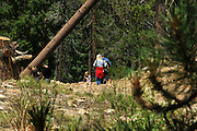 Hikers take to the trail on Mount Lemmon, Santa Catalina Mountains, Coronado National Forest, Sonoran Desert, Tucson, Arizona, USA.