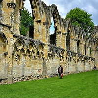 St Mary's Abbey Ruins in York, England<br /> During the late 11th century, Alan Rufus was one of the richest Norman landholders in Yorkshire. In 1088, he and King William II founded a Benedictine monastery in York called St Mary's Abbey. The first church dedicated to St. Olave was built soon afterwards but then rebuilt almost two hundred years later.  The Abbey Church, designed by Simon de Warwick, was grand in style and scale. The nave was 350 feet long. The abbey was plundered and destroyed in 1539 as a consequence of the English Reformation. In the early 18th century, many of its stone blocks were repurposed for other construction around York. All that remains today are sections of the north and west walls.
