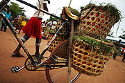 Bicycle loaded with tomatoes at Buhongwa market near Mwanza, Tanzania on Monday December 14, 2009.