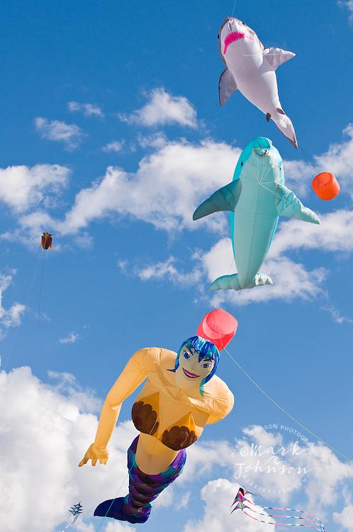 Redcliffe kite festival, Queensland, Australia