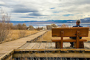 Man Sitting on a Bench on a Wooden Boardwalk Looking Out to Mono Lake