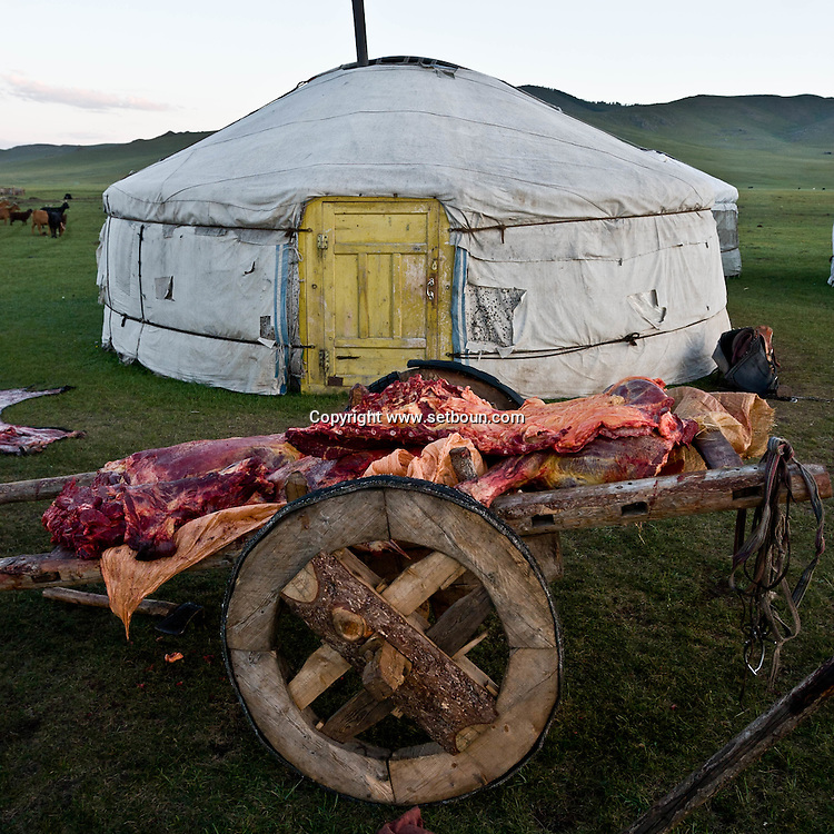 Mongolia. preparation of the meet for the market. daily life in a nomad camp near  Tariat sum arkangai -   /  preparation de la viande pour le marche dans un camp de nomade devant la yourte (ger)   Tariat sum arkangai - Mongolie /  L0009327H
