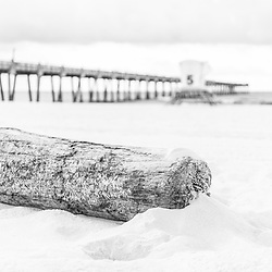 Pensacola Beach Florida driftwood, Gulf Pier and lifeguard tower 5 black and white photo. Pensacola Beach is a coastal city in the Emerald Coast area of the Southeastern United States. Photo is high resolution. Copyright ⓒ 2018 Paul Velgos with All Rights Reserved.