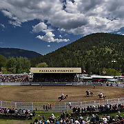 The Falkland Rodeo