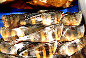 Japan - The fish market in Sapporo