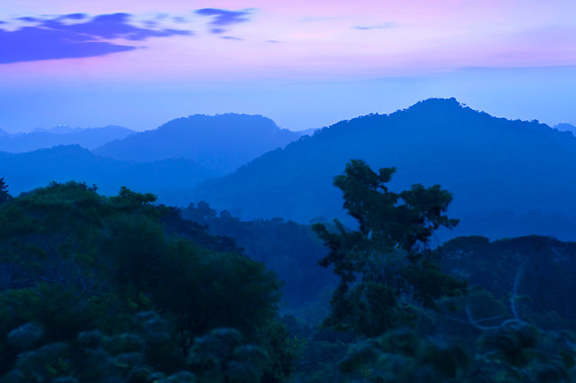 A blue dawn unfolds over the mountains of Soberania National Park, a humid tropical forest just outside of Panama City, Panama.