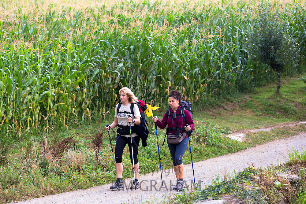 Pilgrims with rucksacks on the Camino de Santiago Pilgrim's Walk to Santiago de Compostela in Galicia, Spain