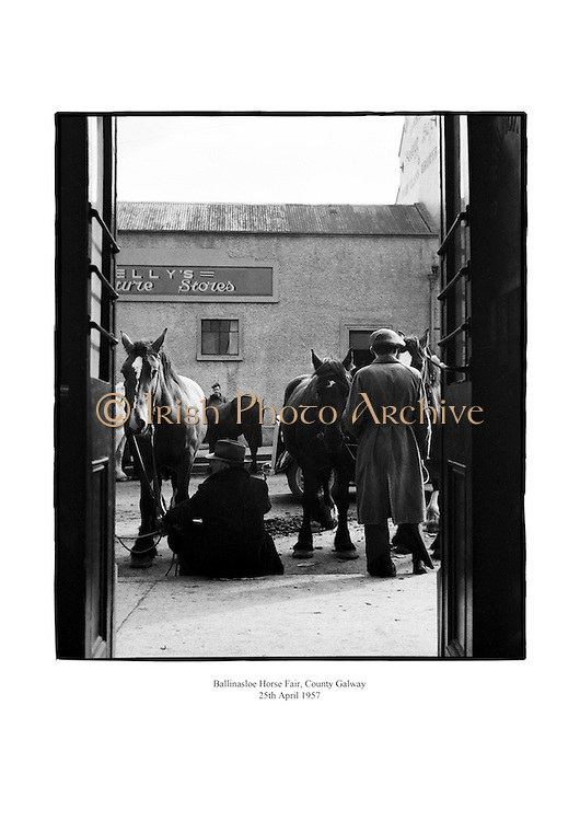 Ballinasloe Horse Fair, County Galway.<br />