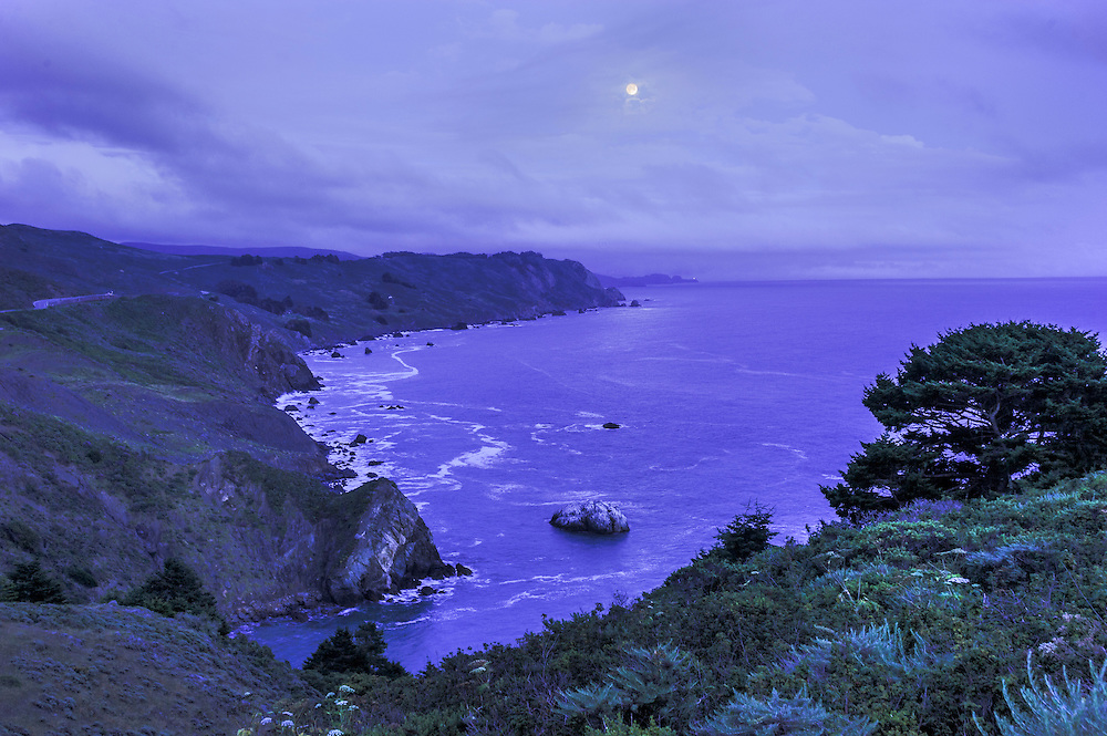 Pacific Coast, Mount Tamalpais State Park, Mill Valley, California