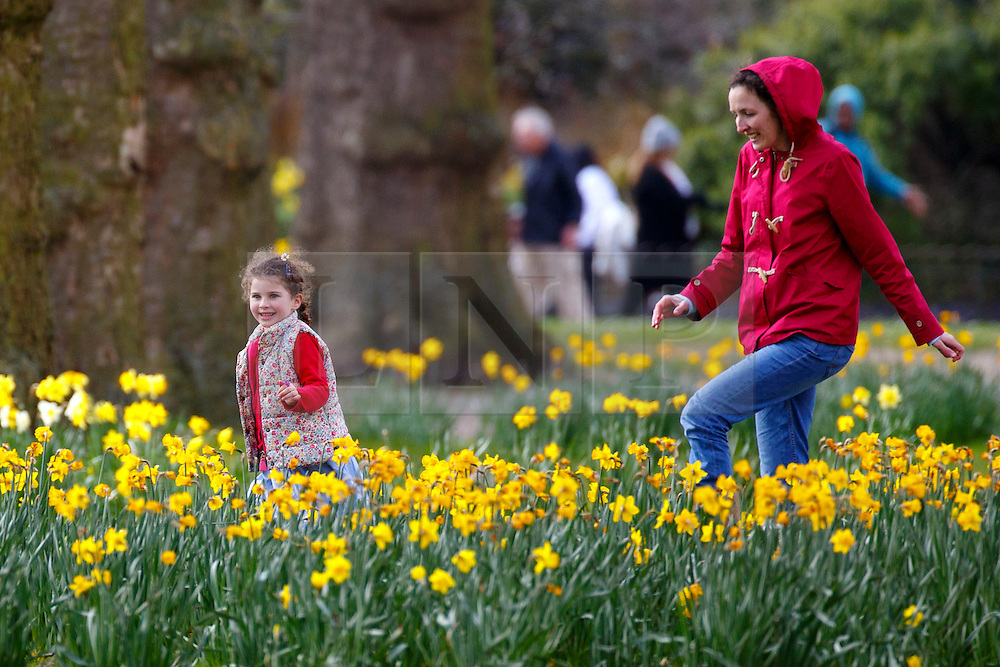 © Licensed to London News Pictures. 31/03/2016. London, UK. A family enjoying sunshine in St James's Park in central London on Thursday, 31 March 2016. Photo credit: Tolga Akmen/LNP