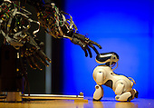 Berti the Robot