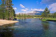 The Lyell Fork of the Tuolumne River, Tuolumne Meadows area, Yosemite National Park, California