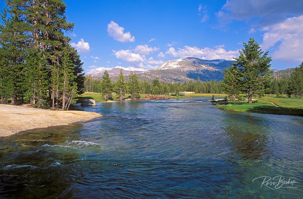The Lyell Fork of the Tuolumne River, Tuolumne Meadows area, Yosemite National Park, California