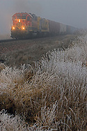 Appearing out of a thick blanket of icy fog that is covering central Nebraska, a BNSF Railway freight train is rolling west towards Hastings, NE.