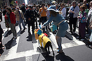 woman with dressed up dog Easter parade New York City