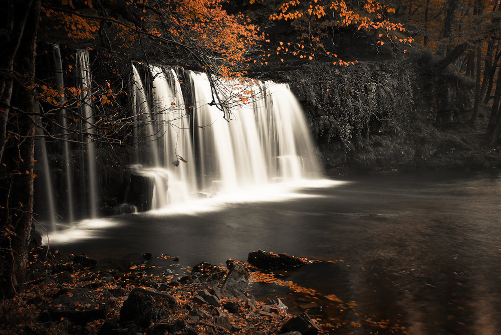 Fall colors with waterfall backdrop