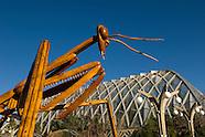 20070402 Big Bugs