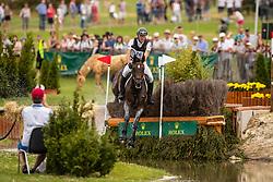 Dibowski Andreas, GER, FRH Corrida<br /> CHIO Aachen 2019<br /> Weltfest des Pferdesports<br /> © Hippo Foto - Dirk Caremans<br /> Dibowski Andreas, GER, FRH Corrida