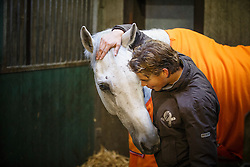 training jong eventingpaard met Tim Lips<br /> Lips Stables - Breda 2013<br /> © Dirk Caremans