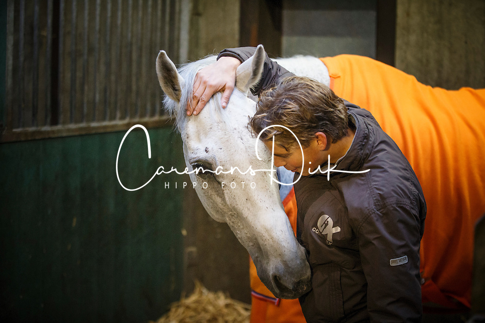 training jong eventingpaard met Tim Lips<br /> Lips Stables - Breda 2013<br /> &copy; Dirk Caremans