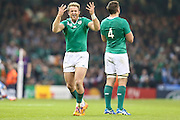 Irelands try scorer Luke Fitzgerald ttys to get the crowd going during the Rugby World Cup Quarter Final match between Ireland and Argentina at Millennium Stadium, Cardiff, Wales on 18 October 2015. Photo by Shane Healey.