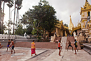 Sports in fromt of Shwedagon Pagoda, Yangon, Myanmar.