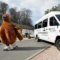 'The Grouse' mascot of the Famous Grouse Experience, Glenturret Distillery, Crieff<br />