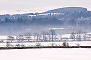 Southern Upland Way,Sanquhar Snowy countryside view with trees, fields and stone wall.