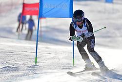 UMSTEAD Danelle Guide: UMSTEAD Rob, B2, USA at 2018 World Para Alpine Skiing World Cup, Veysonnaz, Switzerland