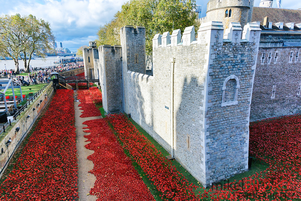 Blood Swept Lands and Seas of Red in the Tower of London. London. Great Britain, Europe.