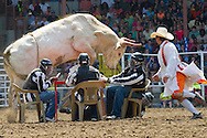 The 2014 Angola Prison Rodeo in Angola, Louisiana on April 27, 2014.