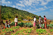 Kachin refugee housewives ai Je Yang Hka near China Myanmar boarder Lai Za, Refugee housewives chatting on the way to forest looking vegetable.