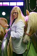 Vienna, Austria. Veterinärmedizinische Universität Wien (Vetmeduni Vienna).<br /> Haflingers at the Department/Clinic for Companion Animals and Horses (Department/Universitätsklinik für Nutztiere und öffentliches Gesundheitswesen in der Veterinärmedizin).<br /> FREE ONLY FOR VETMEDUNI INTERNAL USE - ALL OTHERS MUST ACQUIRE PUBLICATION RIGHTS FROM HEIMO AGA!
