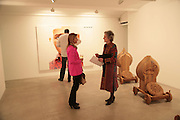 Melanie Salmon and  Lady Chapple  , Other,Riyas Komu and Peter Drake. - VIP  launch of Aicon. London's largest contemporary Indian art gallery. Heddon st. and afterwards ant Momo.15 Marc h 2007.  -DO NOT ARCHIVE-© Copyright Photograph by Dafydd Jones. 248 Clapham Rd. London SW9 0PZ. Tel 0207 820 0771. www.dafjones.com.