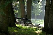 Een hondje loopt door het park in Utrecht.<br /> <br /> A dog is walking in the park.