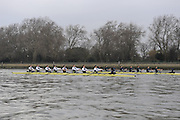 Putney, GREAT BRITAIN,   Foreground,  Bull and Bear , at the start of  the 2008 Varsity/Oxford University [OUBC] Trial Eights, raced over the championship course. Putney to Mortlake, on the River Thames. Thurs. 11.08.2008 [Mandatory Credit, Peter Spurrier/Intersport-images]..Crews - .Bull, Bow. Colin KEOGH, 2. Douglas BRUCE, 3.Michal PLOTOWIAK, 4. David HOPPER, 5. Aaron MARCOVY, 6. Ben HARRISON, 7. Sjoerd HAMBURGER, Stroke Colin SMITH and Cox Philip CLAUSEN-THUE...Bear, Bow. Tim FARQUHARSON, 2. Ben ROSENBERGER, 3. Mike VALLI. 4. Alex HEARNE, 6 Tom SOLESBURY, 7 George BRIDGEWATER, Stroke, Ante KUSURI and Cox Adam BARHAMAND. Varsity Boat Race, Rowing Course: River Thames, Championship course, Putney to Mortlake 4.25 Miles,