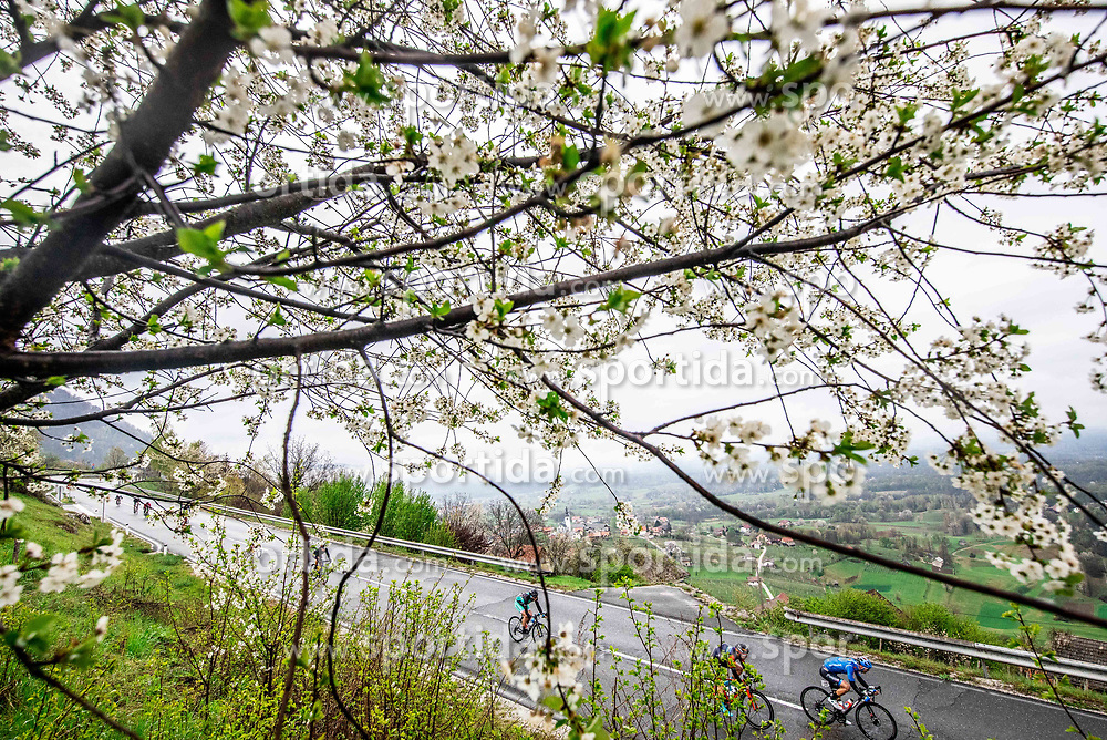 Peloton at Semic during cycling race 5th Grand Prix Adria Mobil, on April 7, 2019, in Slovenia. Photo by Vid Ponikvar / Sportida