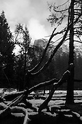 Half Dome, Yosmeite National Park