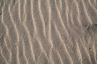 Disegni prodotti sulla sabbia dal vento