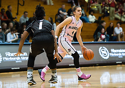 February 22 2016: Robert Morris Colonials guard Anna Niki Stamolamprou (4) dribbles while being guarded by Long Island Blackbirds guard Ashley Brown (1) during the second half in the NCAA Women's Basketball game between the Long Island Blackbirds and the Robert Morris Colonials at the Charles L. Sewall Center in Moon Township, Pennsylvania (Photo by Justin Berl)