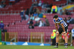 EW Viljoen of Western Province during the Currie Cup Premier Division match between the DHL Western Province and the Pumas held at the DHL Newlands rugby stadium in Cape Town, South Africa on the 17th September  2016<br /> <br /> Photo by: Shaun Roy / RealTime Images