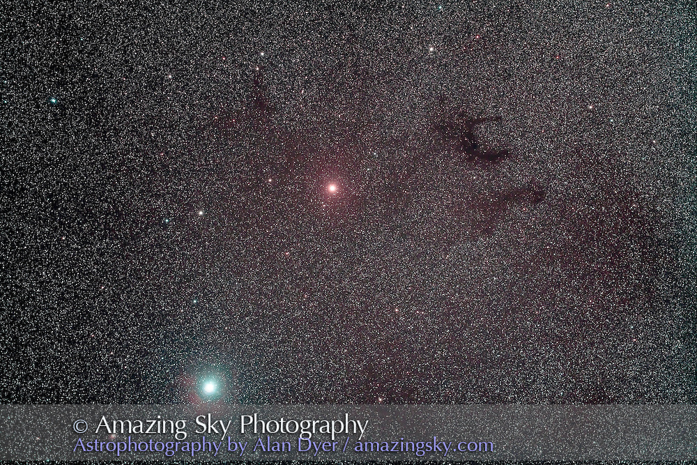 Barnard's E dark nebulas, B 142 and B143 near Altair (bottom) and Tarazed (centre) in Aquila, July 30, 2011. This is a stack of 5 x 10 minute exposures at ISO 800 with the filter-modified Canon 5D MkII and the Borg 77mm f/4.3 astrograph lens (300mm focal length), and using the IDAS V3 nebula filter. Internal reflection from the optics or filter causes the red glow around Altair.