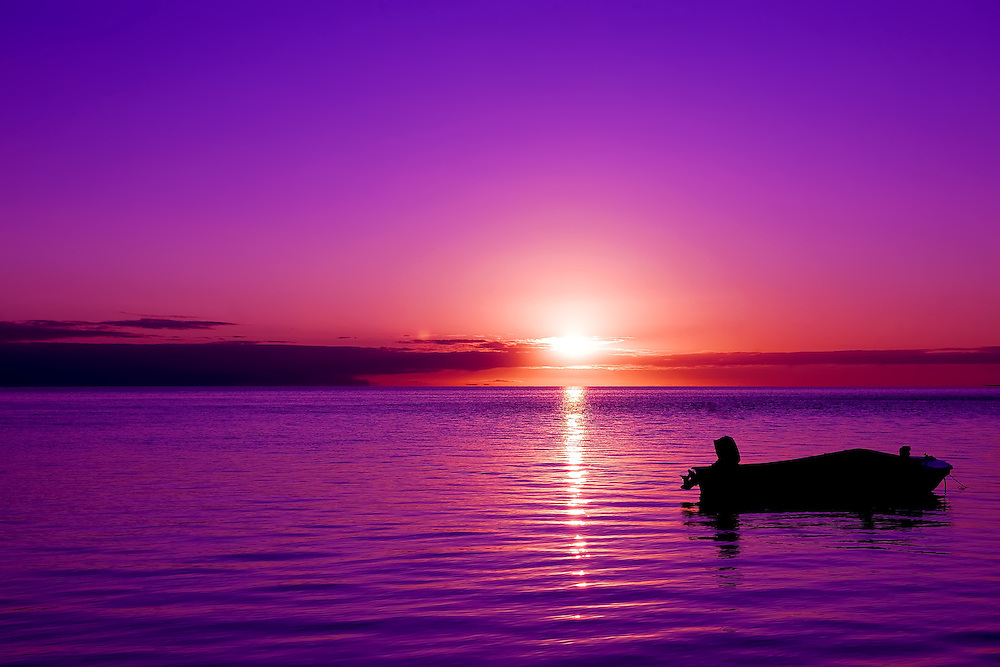 Purple Sunrise