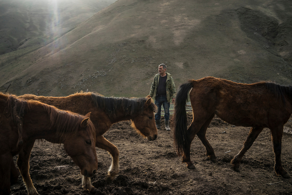 VANK, NAGORNO-KARABAKH - APRIL 22: Vazgen Baghdasaryan, 55, leads a herd of Karabakh horses, a breed originally developed in the region which is now faced with extinction, out to pasture on a farm in the mountains on April 22, 2015 near Vank, Nagorno-Karabakh. Since signing a ceasefire in a war with Azerbaijan in 1994, Nagorno-Karabakh, officially part of Azerbaijan, has functioned as a self-declared independent republic and de facto part of Armenia, with hostilities along the line of contact between Nagorno-Karabakh and Azerbaijan occasionally flaring up and causing casualties. (Photo by Brendan Hoffman/Getty Images) *** Local Caption ***