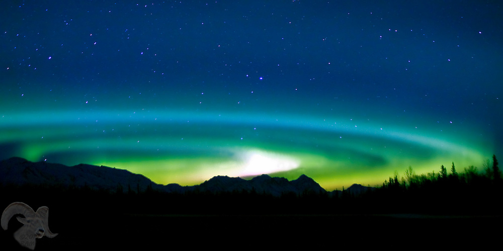 The Aurora Borealis forms a rare set of concentric circles above the Talkeetna Mountain Range and a hay field on Farm Loop road near Palmer, Alaska on leap year morning, February 29, 2008.