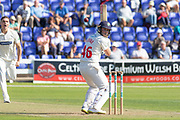 Chris Cooke batting during the Specsavers County Champ Div 2 match between Glamorgan County Cricket Club and Leicestershire County Cricket Club at the SWALEC Stadium, Cardiff, United Kingdom on 17 September 2019.